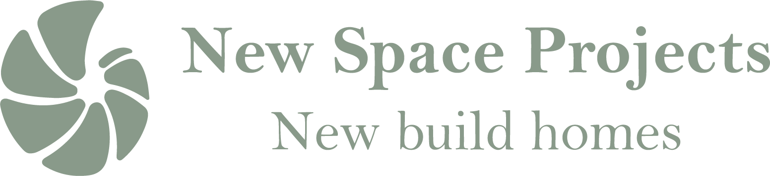 New Space Projects Website Logo